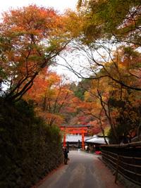 20101128_adashino_01