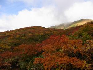 20121009_kurikomayama_07