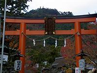 20121124_hiyoshi_04