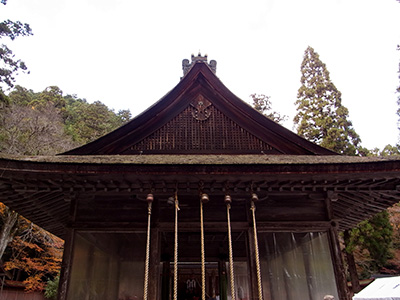 20121124_hiyoshi_07