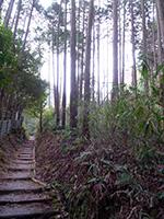 20130112_syoryakuji_04