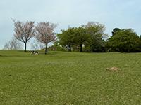 20130423_nara_01