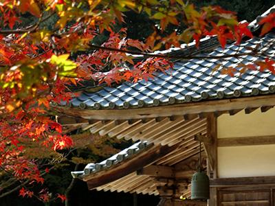 20131116_syoryakuji_12