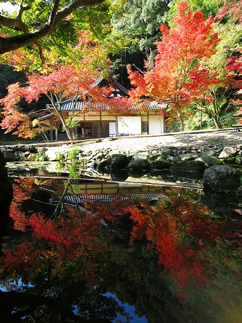 20131116_syoryakuji_17