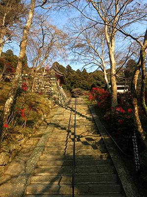 20140111_syoryakuji_07