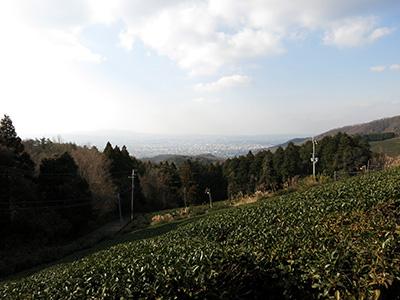 20140111_syoryakuji_17