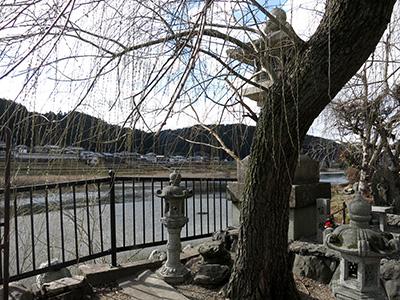 20140211_miyoshino_06