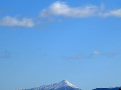 20140211_miyoshino_13
