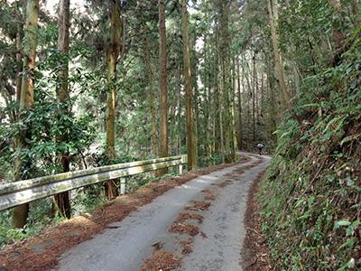 20140211_miyoshino_17