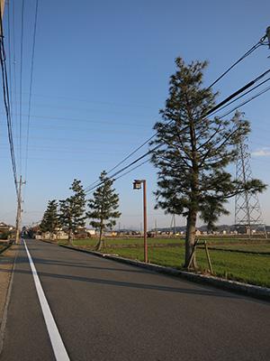 20140315_minakuchi_32