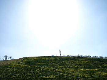 20140513_biwako_02