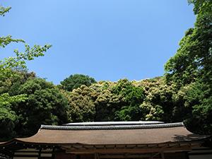 20140511_uji_06